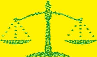 Chicago Law Blog: Illinois Medical Marijuana Law
